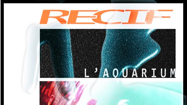 """Le clip """"Ascension"""" annonce le premier projet de L'Aquarium"""