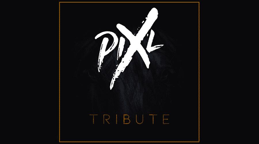 """Pix'l est enfin de retour avec """"Tribute"""""""